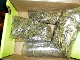 Big Bags of Marijuana